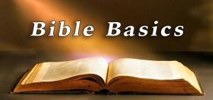 Bible-Basics-banner-landscape_800-x-397
