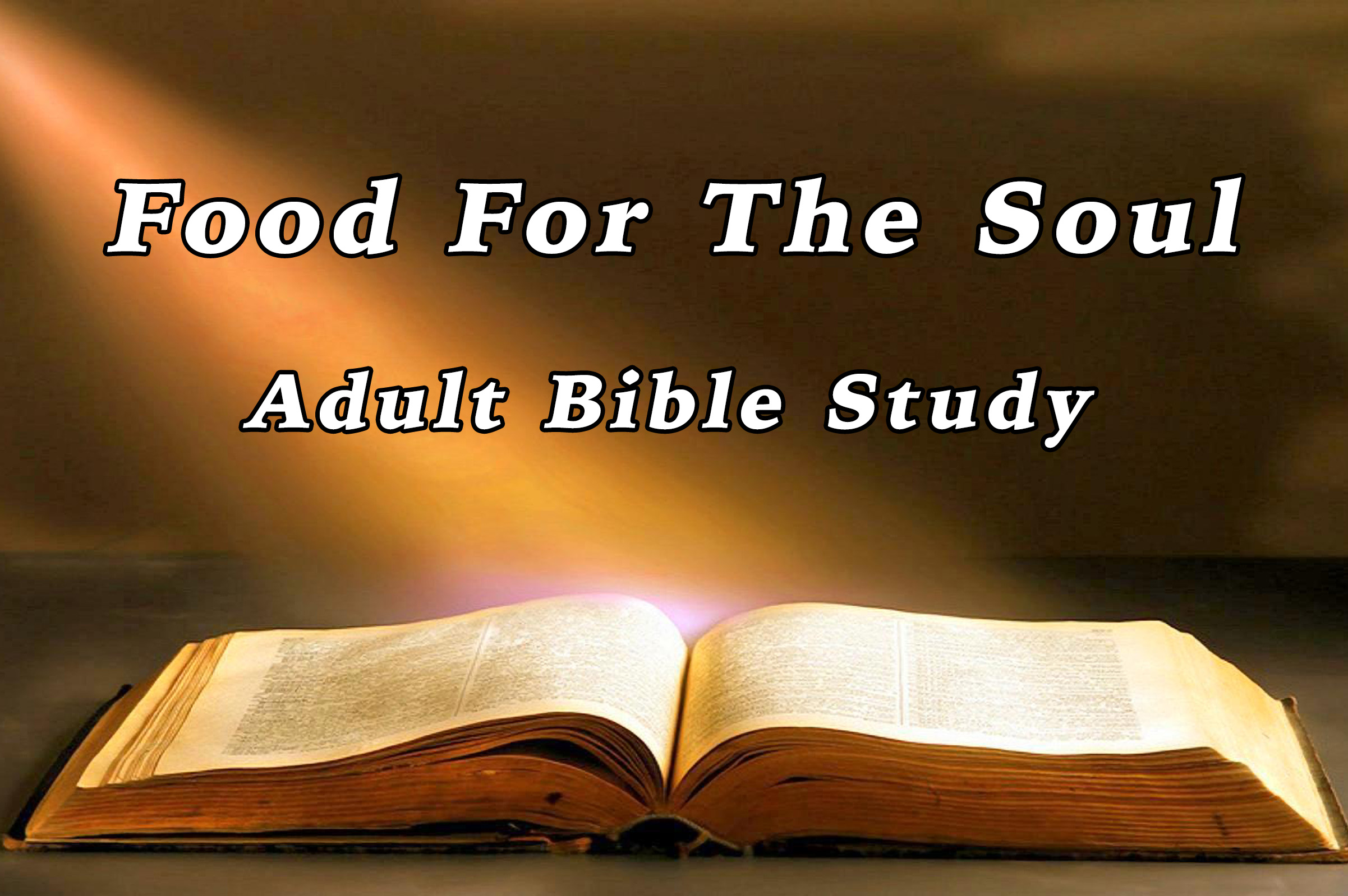 bible programs Adult study