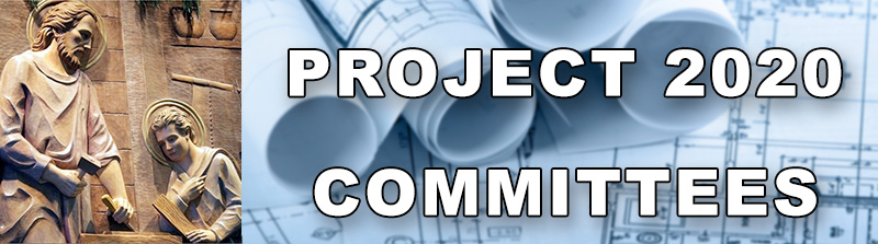 Project 2020 COMMITTEES banner 800pxwide